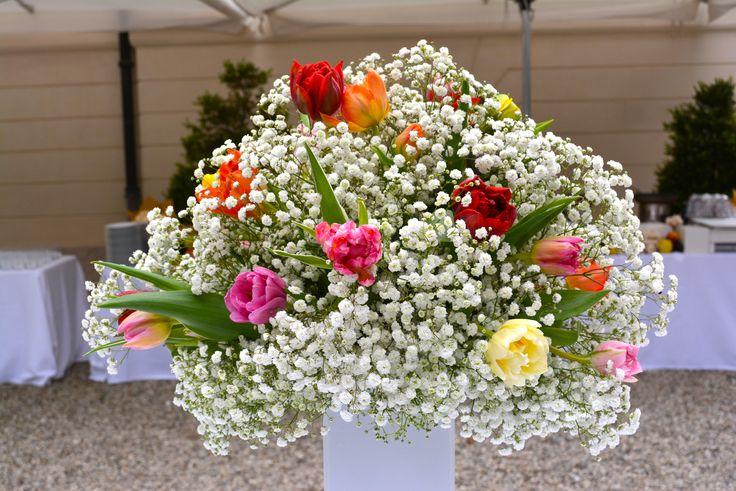 Multicolored tulips with gypsophila