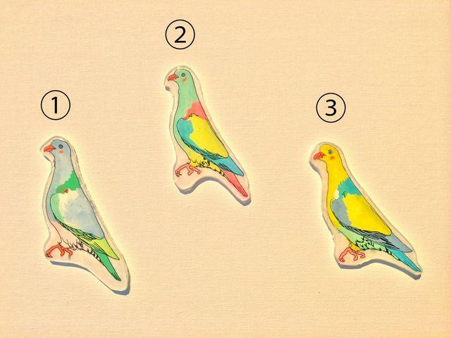 Birds♪