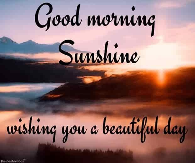 Lovely Good Morning Sunshine Images Best Collection Good Morning Sunshine Quotes Good Morning Beautiful Quotes Cute Good Morning Quotes