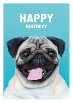 HAPPY BIRTHDAY - PUG GREETING CARD - AVAILABLE AT: ETSY.COM/SHOP/MEETTHEPUGS