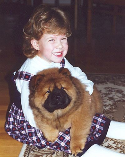 The Chow Chow is a well-mannered dog. Quite good with children. #chowchowdogs