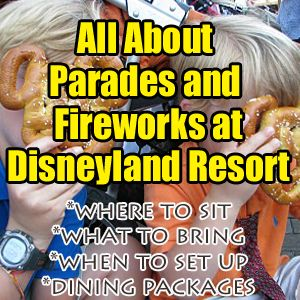 Updated May 13, a2017 ***This post includes the new parade rules put into place early March 2017. ***The following information provided forDisneyland applies to all Disneyland parades includingPaint the Night, Main Street Electrical Parade (MSEP), etc. Parades at Disneyland are some of my...