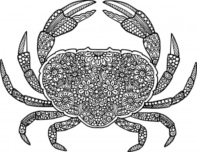 Free Printable Coloring Pages for Summer - Crab