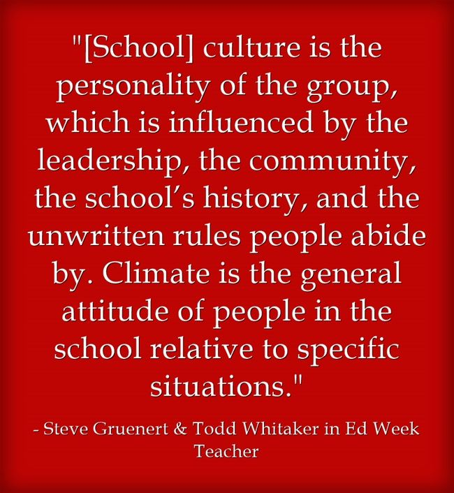 Read an interview with School Culture Rewired authors Todd Whitaker and Steve Gruenert in Education Week Teacher