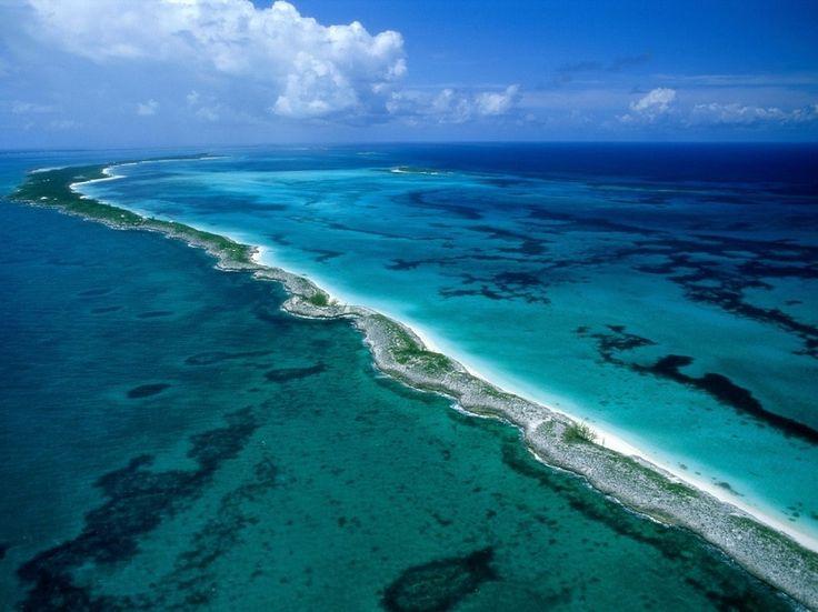 El cambio climático podría provocar la desaparición de la gran barrera de coral - http://www.meteorologiaenred.com/el-cambio-climatico-podria-provocar-la-desaparicion-de-la-gran-barrera-de-coral.html