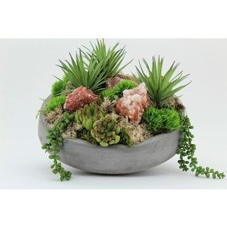 Succulents in Concrete Bowl with Red Calcite | Overstock.com Shopping - The Best Deals on Silk Plants