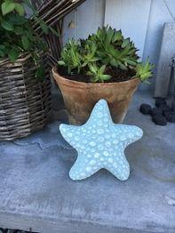 Plastgjutform sjöstjärna