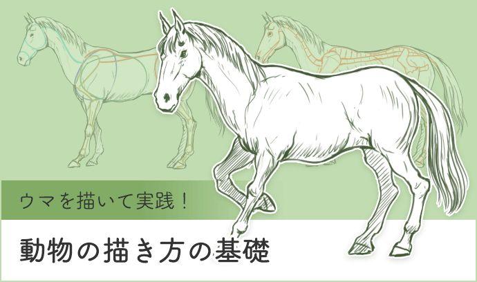 ウマを描いて実践! 動物の描き方の基礎 | いちあっぷ