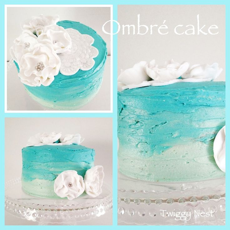 Ombre cake with fondant decorations  Twiggy Nest
