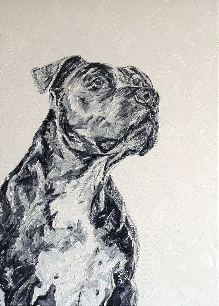 Oldi's Portfolio - 2015 #oldiart #oil #canvas #painting #dog #art #pitbull #junior #millan