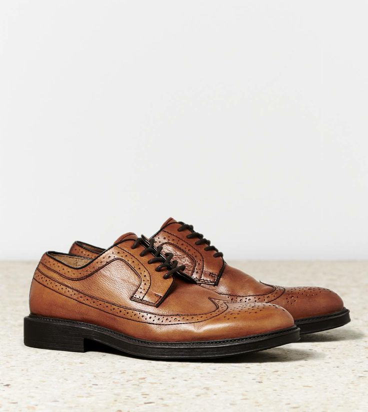 aeo wingtip shoe my style wingtip shoes