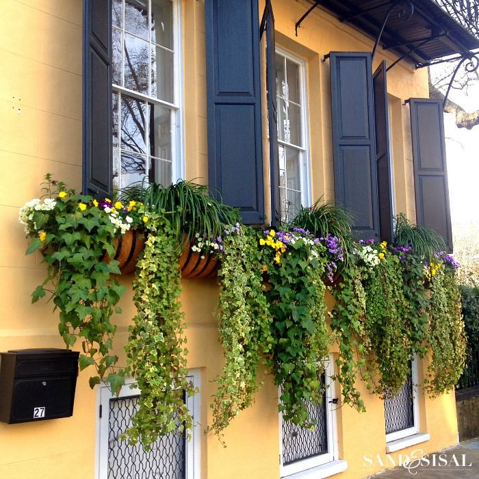 Take a sneak peek of gorgeous downtown Historic Charleston, South Carolina and Middleton Place plantation. Plus be introduced to the Saturday 6.