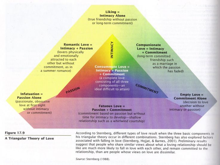 Robert j sternberg triangular theory of love
