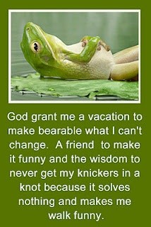 LOL!!!!: Sayings, Quotes, God Grant, Thought, Funny Stuff, Humor, Vacations