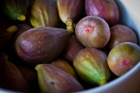 21 FIG RECIPES TO MAKE RIGHT NOW