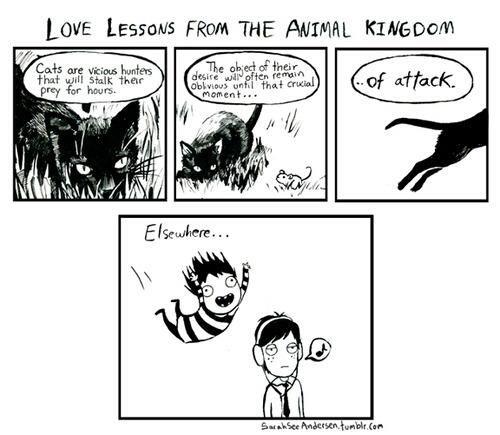 Doodle Time: Sarah See Andersen Comics Hahahahahahahaha!!!!!!!