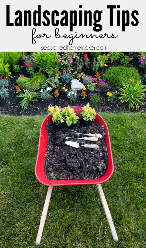 Landscape Gardening for Beginners: Most people never begin a new garden landscape because they don't know where to start. I Have 8 Gardening Landscape Tips for Beginners that will teach you How to Landscape. #seasonedhome
