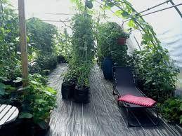 Bildresultat för bilder växthus kanalplast gör själv