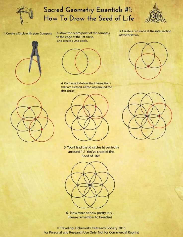 How to draw the seed of life. Sacred Geometry                              …
