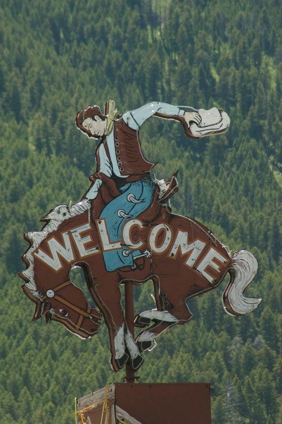 Cowboy on a bucking bronc... vintage sign  (western, wild wild west)