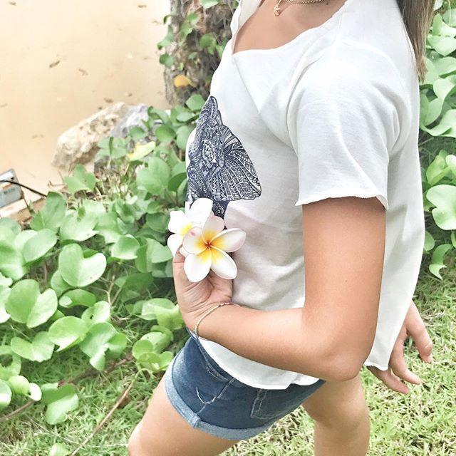 """""""[day 14 - krabi, Ao nang] In oriente l'albero di #plumeria viene considerato l'albero dell'immoralità e della rinascita, significato è dovuto anche al fatto che i suoi fiori sbocciano anche dopo la recisione di un ramo. Nel linguaggio dei fiori e delle piante questo fiore, noto anche come #francipane , simboleggia  la #bellezza e la semplicità. . #frangipane  #linguaggiodeifiori #ilovethailand #ilfiordicapperoonholiday #ilfiordicapperointhailandia #thailandia #flower #flowers #travelblogger…"""
