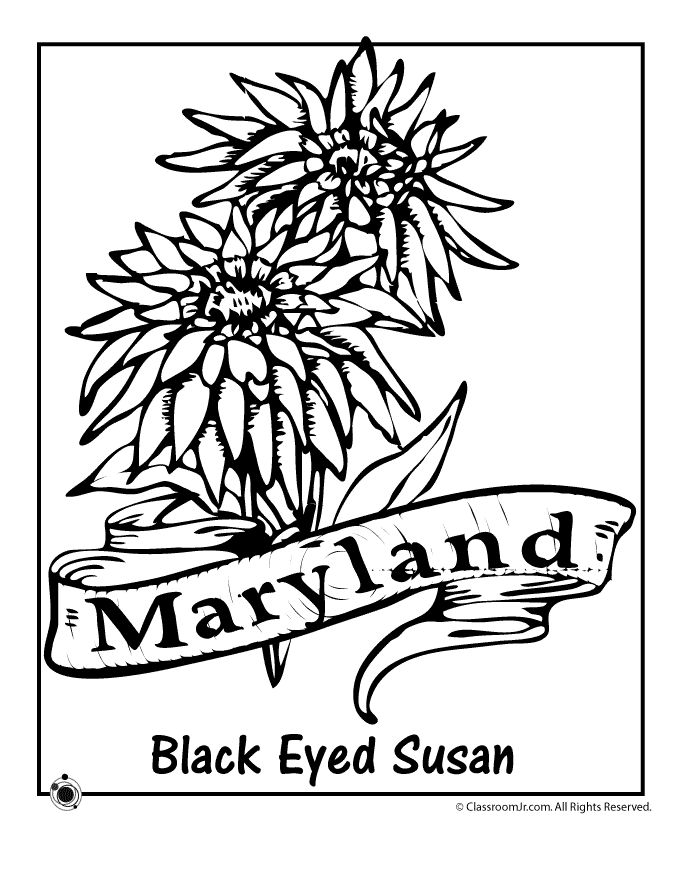 158 best State Coloring Pages and Embroidery images on Pinterest - copy coloring pictures of flowers and trees
