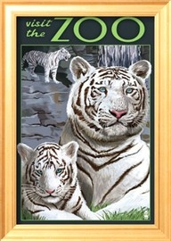 Vintage zoo poster, White Tiger family, £17.99 from AllPosters
