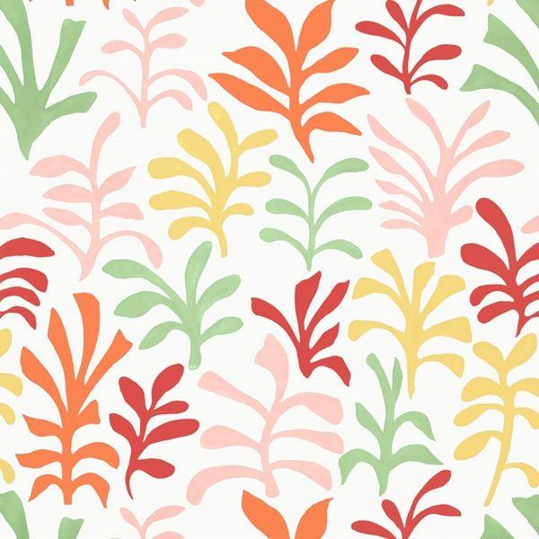 Schumacher - Ode To Matisse