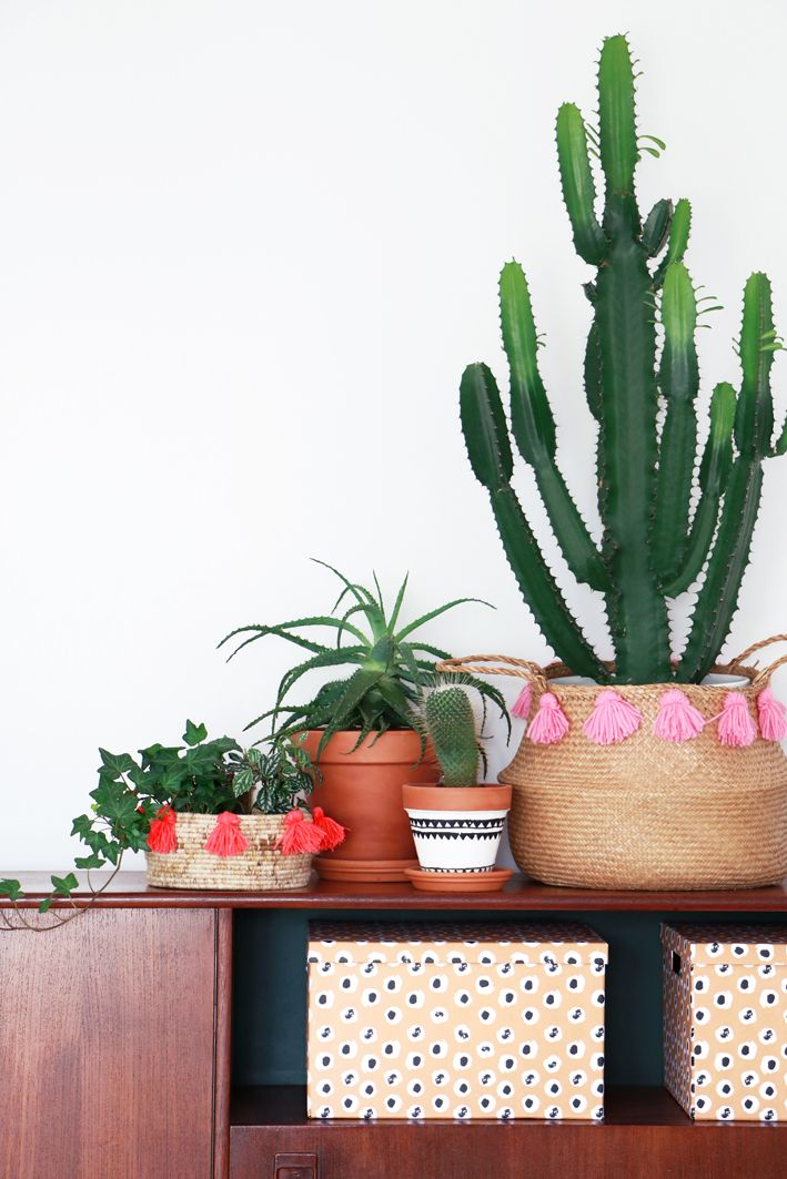 MY ATTIC / Diy Boho Baskets for vtwonen / greens / plants / cacti Photography…