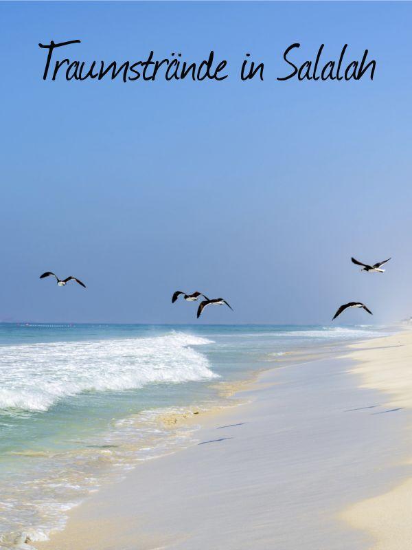 In Salalah gibt es traumhafte Strände. Wir haben die schönsten gesucht und gefunden.