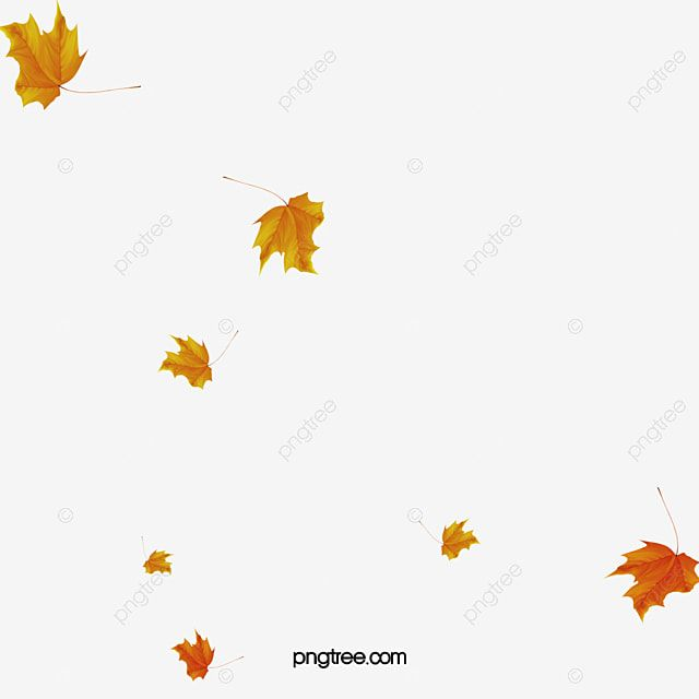 Falling Leaves Leaves Falling Down Floating Elements Png Transparent Clipart Image And Psd File For Free Download In 2020 Autumn Leaves Clip Art Clipart Images