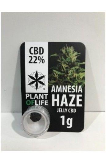 Plant Of Life Cbd Jelly 22% Amnesia Haze 1gr