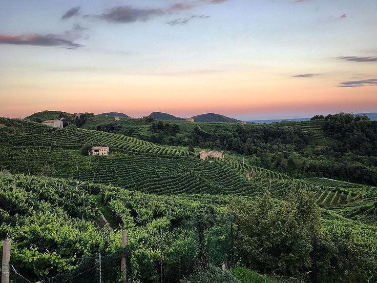 Sunset on Prosecco Superiore - via Instagram