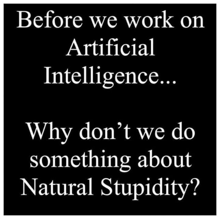 Before We Work On Artifical Intelligence Why Don T We Do Something About Natural Stupidity Funny Quotes Sarcasm Funny Quotes Sarcastic Quotes