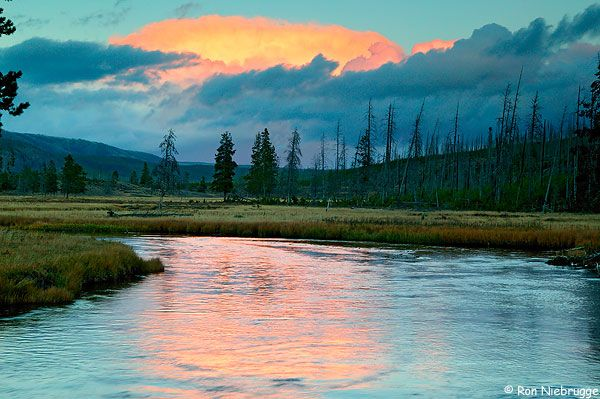 Gibbon River Photos, Yellowstone: Outdoor Pictures, Buckets Lists, Gibbon Rivers, Places, Rivers Photos, Yellowstone Parks, Beautiful Photography, National Parks Wyoming, Yellowstone National Parks