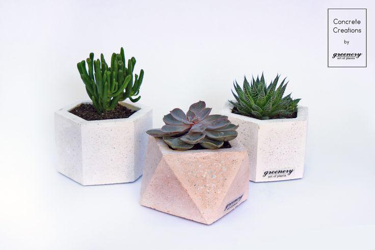 Concrete creations by greenery #concrete #concretecreations #pots #greenery #succulents #cactus #plants #chania #greece