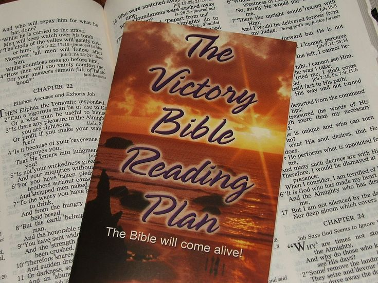 Unique One Year Bible Reading Plans: Victory Bible Reading Plan