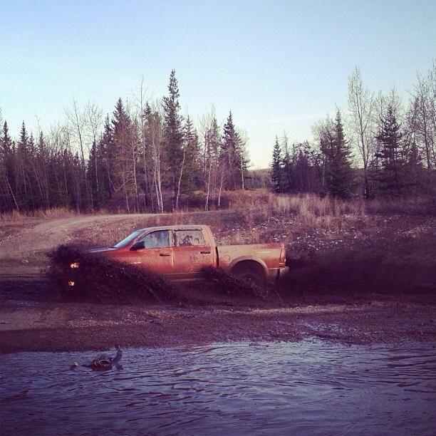 Muddy Truck CustomTruckPartsInc.com  #mudlife  #mudder #pickup #trucks #pickups #pickuptruck #truckpics  #mudtruck