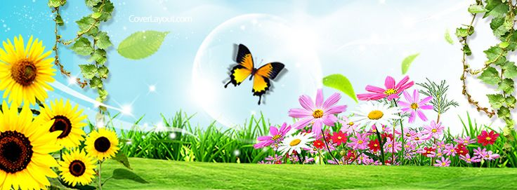 Spring Accommodation Facebook Covers: Butterfly Spring Day Facebook Cover CoverLayout.com