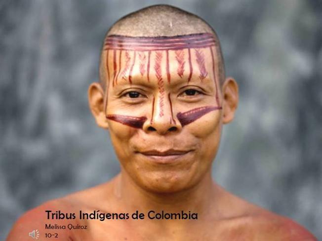 TRIBUS INDIGENAS DE COLOMBIA