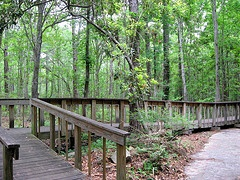 Tillie K. Fowler Regional Park.   http://apps2.coj.net/parksinternet/parkdetails.asp?parkid=127
