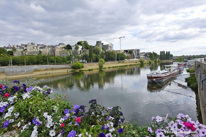 La Maine à Angers en 2012. On reparle de l'aménagement des rives, une réunion publique pour la présentation du document qui servira de référence est organisée le 23 mai prochain à la Fac de Médecine d'Angers