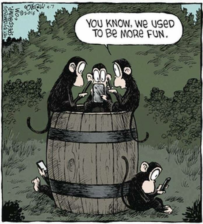 Barrel of Monkeys #humor