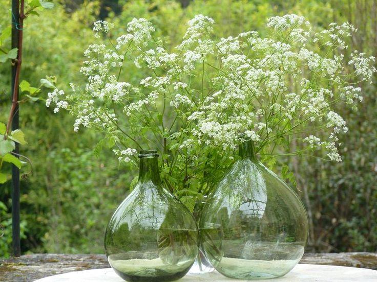 les 34 meilleures images du tableau dame jeanne sur pinterest bouteille vases et bouteilles. Black Bedroom Furniture Sets. Home Design Ideas