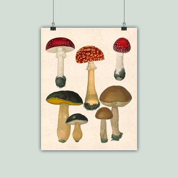 Arte seta seta impresión botánicos cocina arte por DigitalArtLand