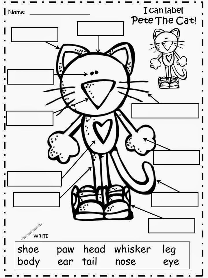 f356187ec5a70793b801a852bc446a82--book-activities-pete-the-cat-science-activities