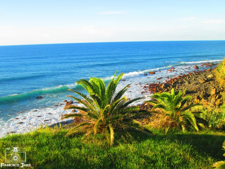 Visit Madeira - null