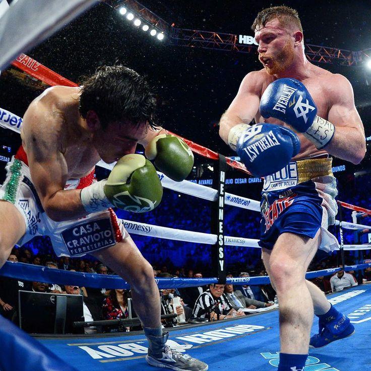 Canelo Alvarez bosses tame Julio Cesar Chavez Jnr LINK IN BIO http://www.boxingnewsonline.net/boxing-results-canelo-alvarez-bosses-tame-julio-cesar-chavez-jr/ #boxing #BoxingNews #CaneloChavezJr #