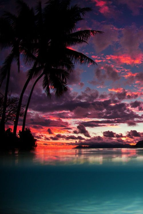 Tahiti Dreaming by Adam Duffy