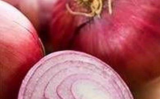 La cipolla è un antibiotico naturale con una miriade di altre proprietà